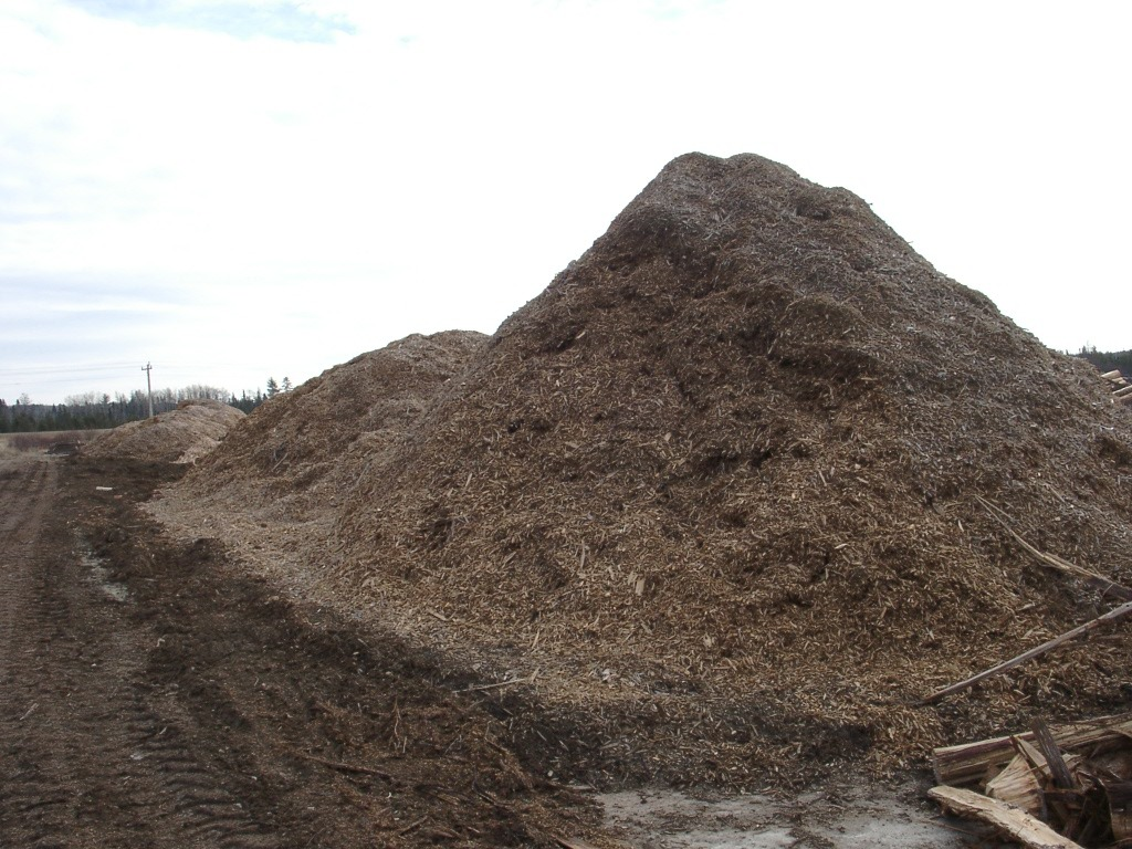 large pile of cedar mulch