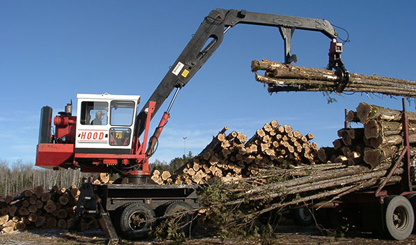 unloading timber log raw materials
