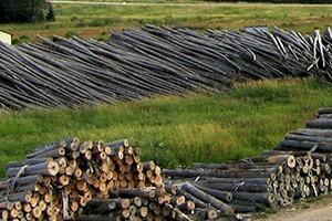 log materials